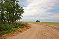 Farm Road (5202693666).jpg