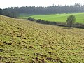 Farmland, Bradfield - geograph.org.uk - 677769.jpg