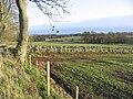 Farmland at Graden - geograph.org.uk - 288069.jpg