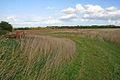 Farmland on Luffenham Heath - geograph.org.uk - 230890.jpg