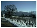February Minus 10 Grad Celsius View Black Forest Germany - Magic Rhine Valley Photography 2013 - panoramio.jpg