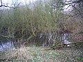 Felley Mill pond - geograph.org.uk - 311942.jpg