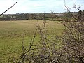 Fields bordering the A5 - geograph.org.uk - 325790.jpg