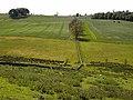 Fields near Callaly - geograph.org.uk - 1332170.jpg