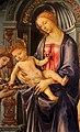 Filippino lippi, madonna col bambino e angeli, 1485-86, 04.jpg