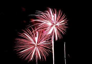 Fireworks 5049