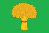 Flag of Kansk (Krasnoyarsk krai).png