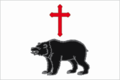 Flag of Medvedevo (Tver oblast).png