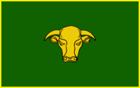Flag of Transkei Defence Force Army