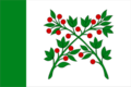 Flag of Vadinsk (Penza oblast).png