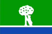 Flag of ccvm.png