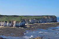 A line of white cliffs topped with green turf protruding into the sea.