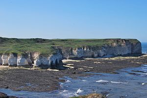 East Riding of Yorkshire - The chalk cliffs at Flamborough Head