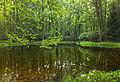 Flickr - Nicholas T - Graver Arboretum (Revisited).jpg