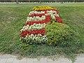 Flower bed, national CoA-shaped, 2018 Mezőkövesd.jpg