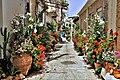 Flowerstreet (35168166050).jpg