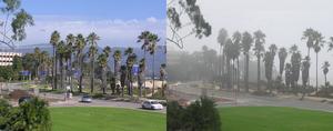 Fog&Sunny.png