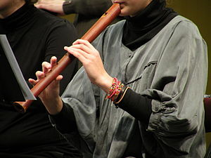 Recorder (musical instrument) - A recorder player playing a recorder