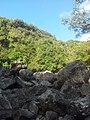 Fond de la ravine - panoramio.jpg