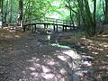 Footbridge in Sewer's Copse - geograph.org.uk - 575606.jpg