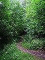 Footpath, Appletree Bottom - geograph.org.uk - 225472.jpg