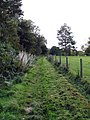 Footpath along woodland edge - geograph.org.uk - 989902.jpg