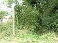 Footpath near Brickyard Farm - geograph.org.uk - 1497165.jpg