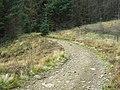 Footpath on Mynydd Blaenrhondda - geograph.org.uk - 1004351.jpg