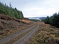 Forestry track - geograph.org.uk - 1718211.jpg