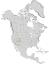 Fraxinus anomala range map 0.png