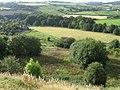 From Melandra Castle towards River Etherow - geograph.org.uk - 978405.jpg