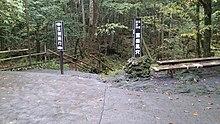 aokigahara � wikipedia