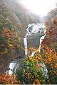 Fukuroda fall (6367540619).jpg