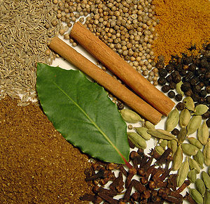 Spice mixture Indian Garam Masala