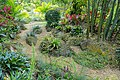 Garden view - Mounts Botanical Garden - Palm Beach County, Florida - DSC03733.jpg