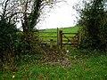 Gate and stile - geograph.org.uk - 1597324.jpg
