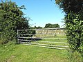 Gate into an orchard - geograph.org.uk - 1368182.jpg