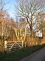 Gate into woodland - geograph.org.uk - 1110828.jpg