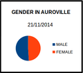 Gender in Auroville (2014).png