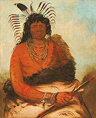 Háh-nee, The Beaver, a Warrior