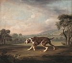 George Stubbs - The Pointer - WGA21950.jpg