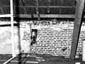 Gevel en dak - Wassenaar - 20445532 - RCE.jpg