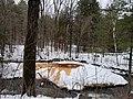 Geyser Island Spouter in winter.jpg