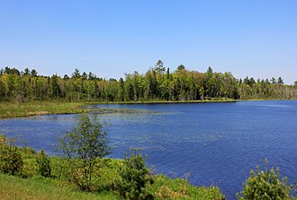 Laurentian Mixed Forest Province - Woods Lake and background mixed forest in Wisconsin's Governor Thompson State Park.