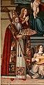 Giovanni di Andrea de magistris (bottega), madonna in trono tra i ss. romolo e rocco, 1539, 03.jpg