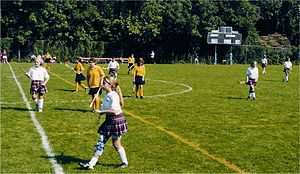 History of field hockey - Grass Playing Surface