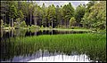 Glencoe Lochan.. - panoramio.jpg