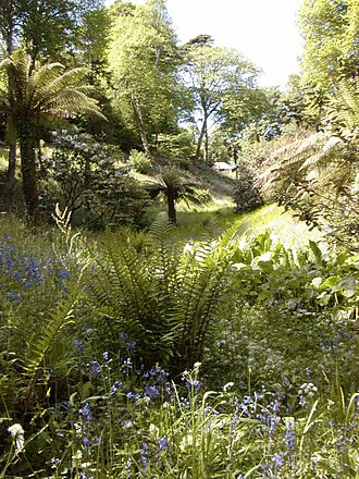 Glendurgan Garden - Image: Glendurgan View 03