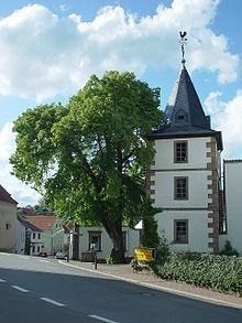 Steinbach am Glan Kaltwintergarten