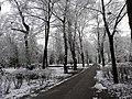 Glogow, Poland - panoramio (42).jpg